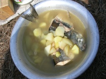 Omul soup