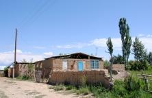 Home, Barbulak, 2013