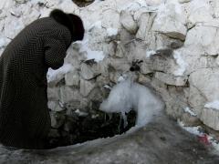 Spring in Boom Gorge, 2008