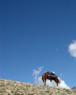 Above the Jailoo near Kul-Tor, 2008
