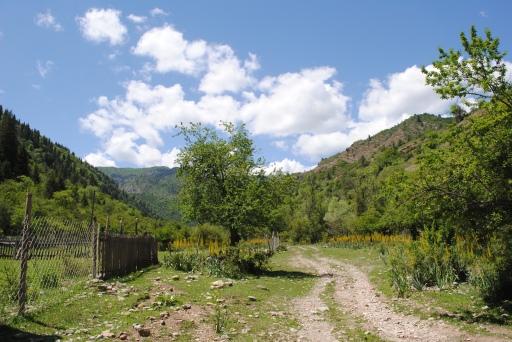 Near Sary Chelek, 2013