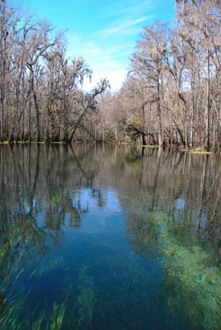 Ichetucknee River